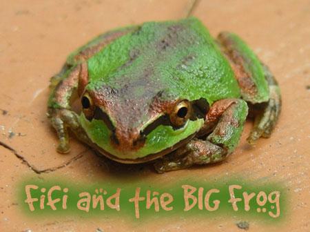 bigfrog1banner.jpg